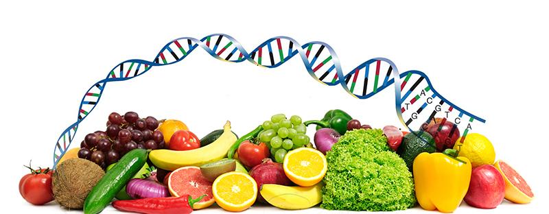 Nutrition et infertilité féminine